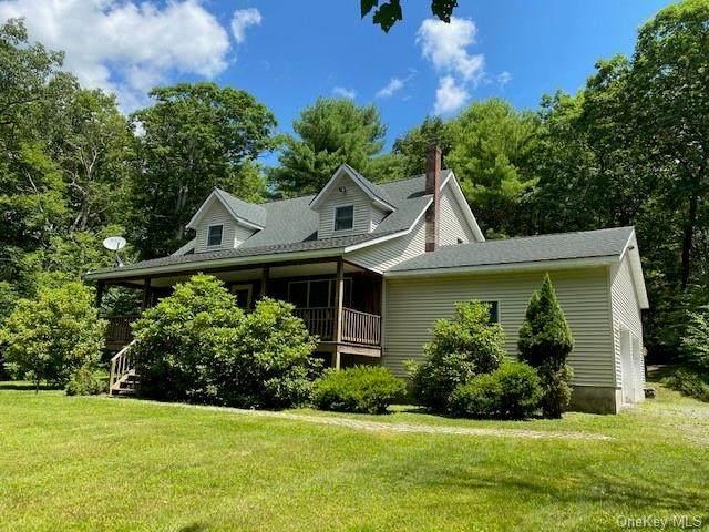 174 Leers Road, Glen Spey, NY 12737 (MLS #H6056339) :: Frank Schiavone with William Raveis Real Estate