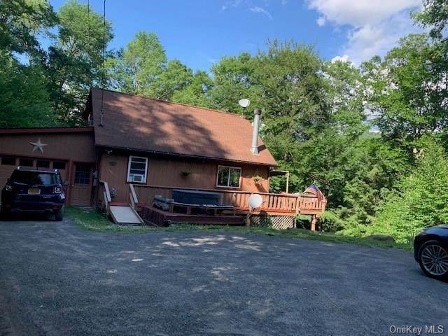 36 Beattie Road, Roscoe, NY 12776 (MLS #H6058417) :: Mark Boyland Real Estate Team
