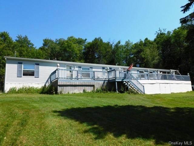 415 Little Ireland Road, Livingston Manor, NY 12758 (MLS #H6058844) :: Mark Boyland Real Estate Team