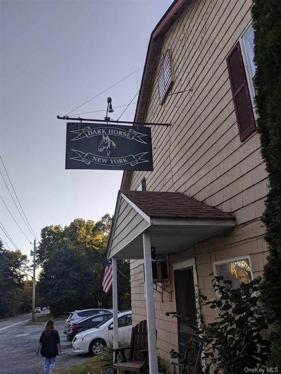 1725 Route 284, Slate Hill, NY 10973 (MLS #H6059475) :: Cronin & Company Real Estate