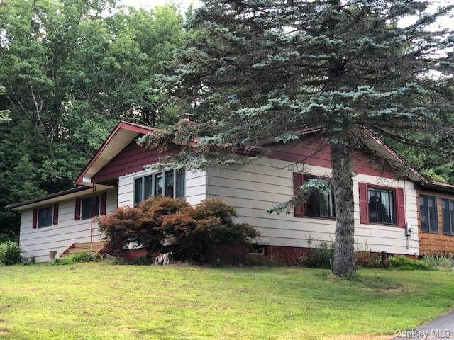 95 Lux Road, Cochecton, NY 12726 (MLS #H6060296) :: William Raveis Baer & McIntosh