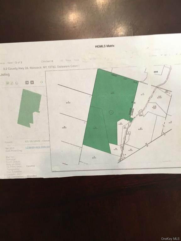 County  Hwy 28, Hancock, NY 13783 (MLS #H6061094) :: McAteer & Will Estates | Keller Williams Real Estate