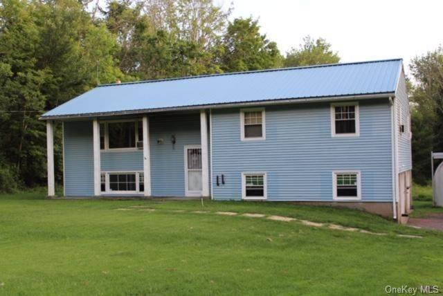 1123 Ulster Heights Road, Ellenville, NY 12428 (MLS #H6061556) :: Cronin & Company Real Estate