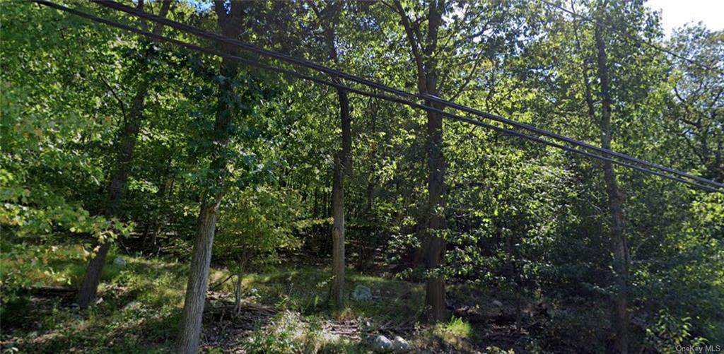142 Call Hollow Road - Photo 1