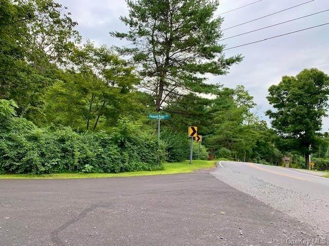 488 Pleasant Ridge Road - Photo 1