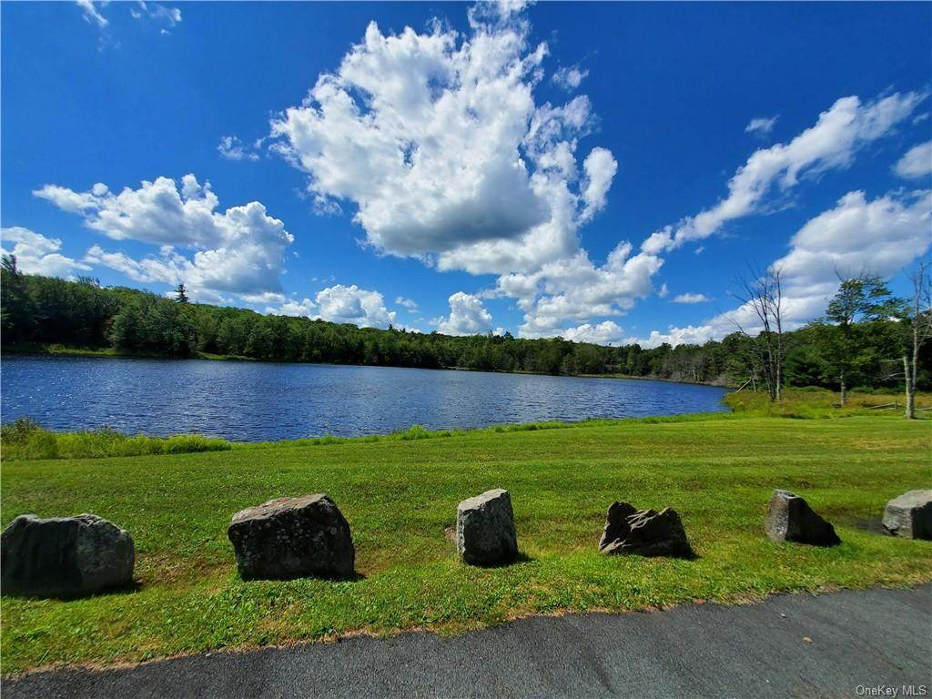 Pine Lake Drive - Photo 1