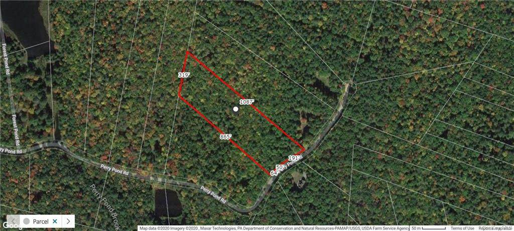 Lot 59 Perry Pond Road (Nys Rt 97) - Photo 1
