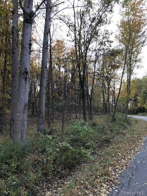 Ebenezer Lot 80, 81 & 82 Lane, Pound Ridge, NY 10576 (MLS #H6066633) :: Mark Boyland Real Estate Team