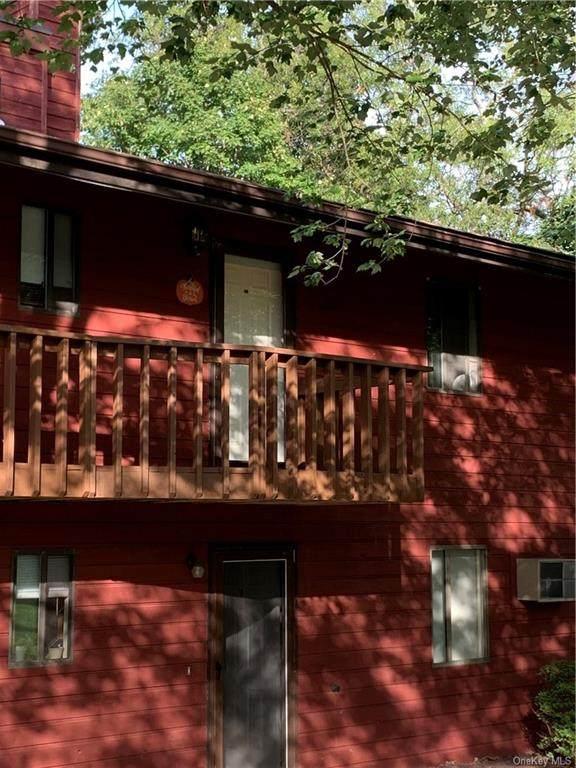 41 Berwynn Road D7, Harriman, NY 10926 (MLS #H6068392) :: Mark Seiden Real Estate Team