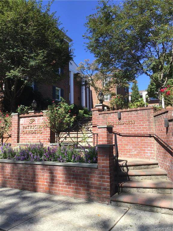 1825 Palmer Avenue 2D, Larchmont, NY 10538 (MLS #H6068806) :: William Raveis Baer & McIntosh