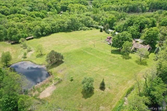 291 E Fallkill Road, Hyde Park, NY 12538 (MLS #H6070053) :: Kendall Group Real Estate | Keller Williams