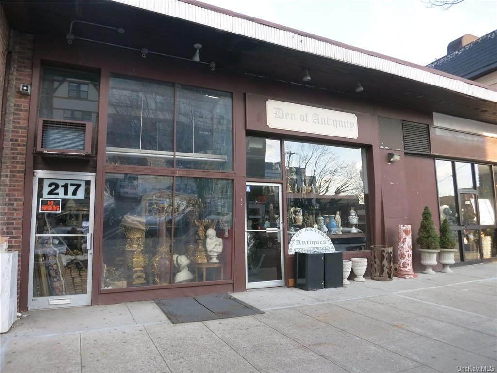213-217 Mamaroneck Avenue - Photo 1