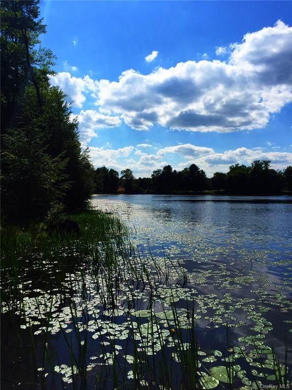 Beaver Dam Rd., Bethel, NY 12720 (MLS #H6071059) :: William Raveis Baer & McIntosh