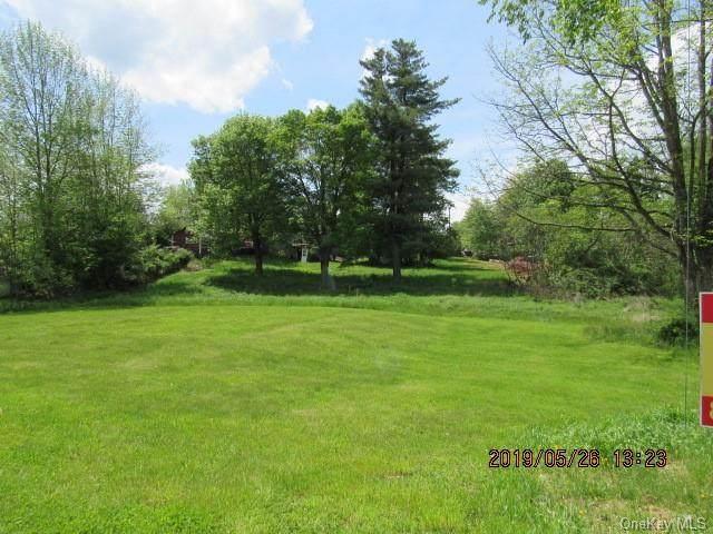 State Rte 42, Monticello, NY 12701 (MLS #H6071351) :: William Raveis Baer & McIntosh