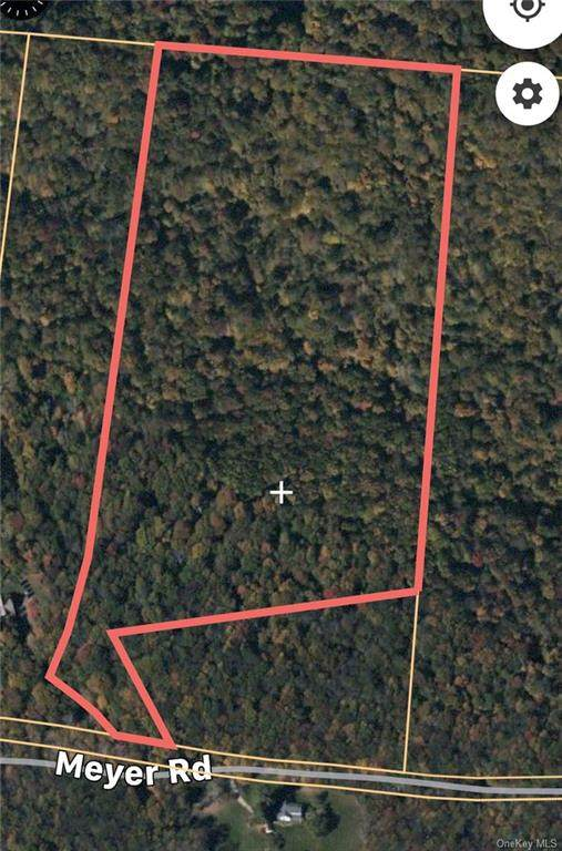 Meyer Road, Livingston Manor, NY 12758 (MLS #H6072166) :: Kevin Kalyan Realty, Inc.