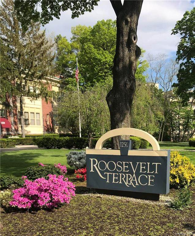 1250 North Avenue #106, New Rochelle, NY 10804 (MLS #H6072426) :: The McGovern Caplicki Team