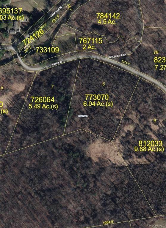 8 Ravine Road, Pawling, NY 12564 (MLS #H6072629) :: McAteer & Will Estates | Keller Williams Real Estate