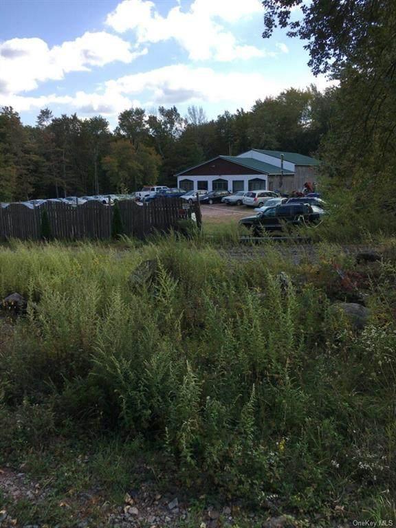 47 Cooper Road, Monticello, NY 12701 (MLS #H6072829) :: Cronin & Company Real Estate