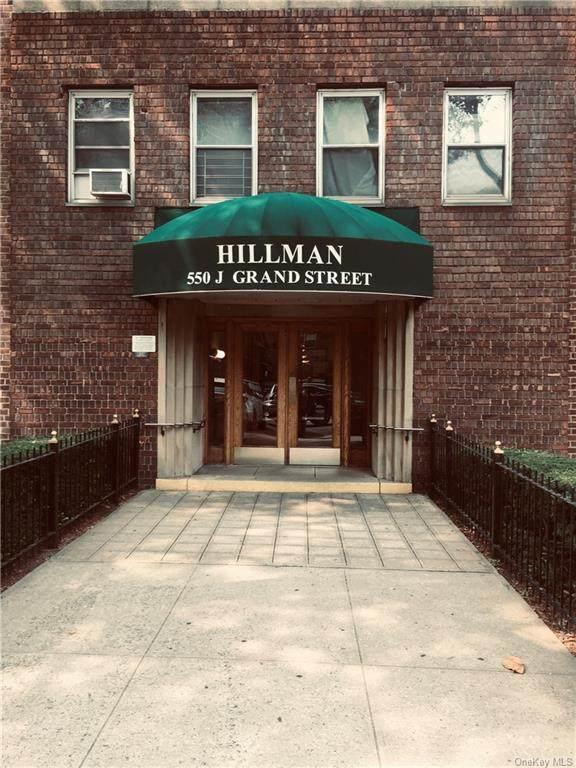 550 Grand Street J3g, Newyork, NY 10002 (MLS #H6073422) :: Nicole Burke, MBA | Charles Rutenberg Realty