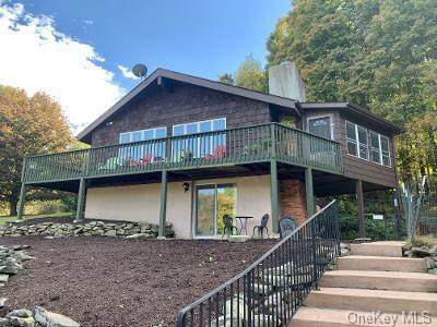 201 Youngblood Road, Montgomery, NY 12549 (MLS #H6073748) :: William Raveis Baer & McIntosh