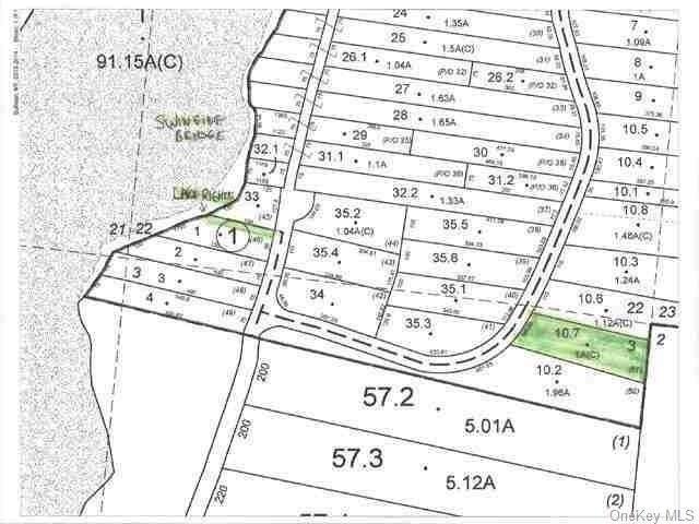 (57.-3-10.7) Starlight Drive, Monticello, NY 12701 (MLS #H6074038) :: Cronin & Company Real Estate
