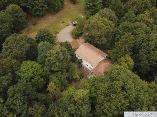 271 Camp, Red Hook, NY 12571 (MLS #H6074045) :: Kendall Group Real Estate | Keller Williams