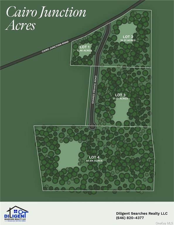 Cairo Junction Road, Catskill, NY 12414 (MLS #H6074176) :: Nicole Burke, MBA | Charles Rutenberg Realty