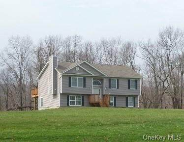 TBD Delmar Hill Road, Slate Hill, NY 10973 (MLS #H6074368) :: William Raveis Baer & McIntosh