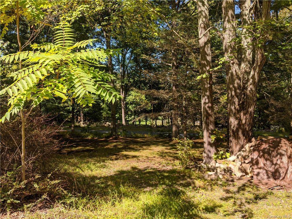 Lot 24 South Road - Photo 1