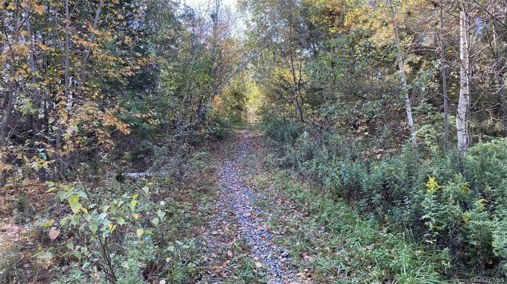 na White Birch Road - Photo 1