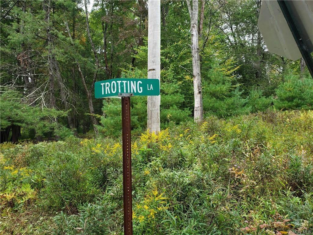 13 Trotting Lane - Photo 1