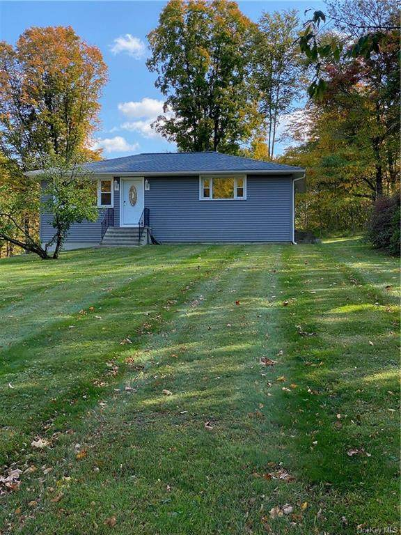 215 Rushmore Road, Stormville, NY 12582 (MLS #H6076545) :: Kendall Group Real Estate   Keller Williams