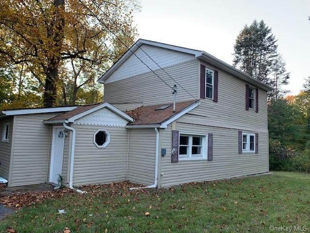 24 Amato Lane, New Paltz, NY 12528 (MLS #H6076575) :: Kendall Group Real Estate | Keller Williams