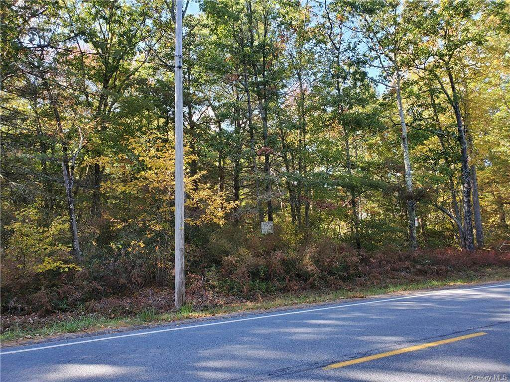 Lot 78 Forestburgh Road - Photo 1