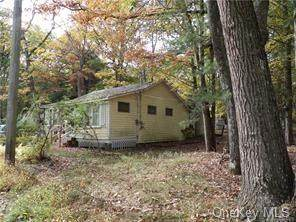 97 Delaware Trail, Glen Spey, NY 12737 (MLS #H6076844) :: Frank Schiavone with William Raveis Real Estate