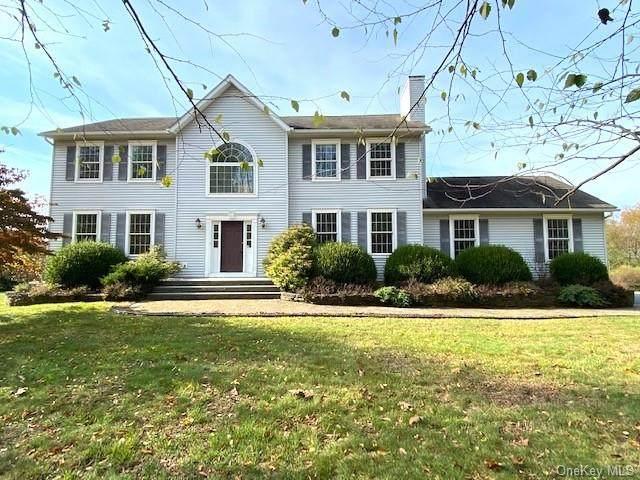 236 Todd Hill Road, Lagrangeville, NY 12540 (MLS #H6078090) :: William Raveis Baer & McIntosh
