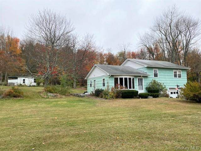 3469 State Route 42, Monticello, NY 12701 (MLS #H6078400) :: Nicole Burke, MBA | Charles Rutenberg Realty