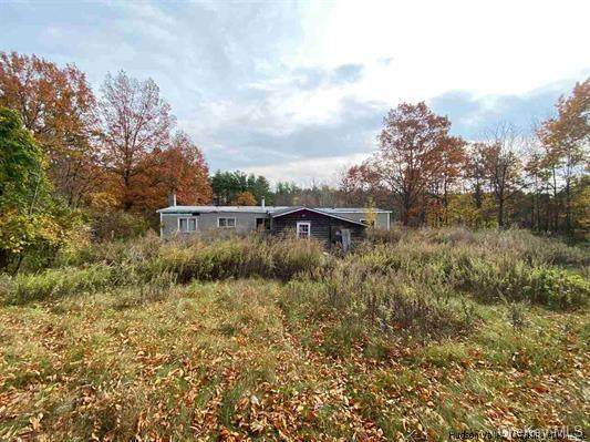 2851 Route 23A L, Palenville, NY 12463 (MLS #H6079525) :: Kevin Kalyan Realty, Inc.