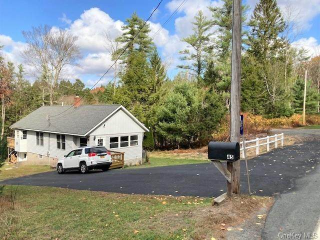 45 Highland Lake Road, Eldred, NY 12732 (MLS #H6079654) :: Nicole Burke, MBA | Charles Rutenberg Realty