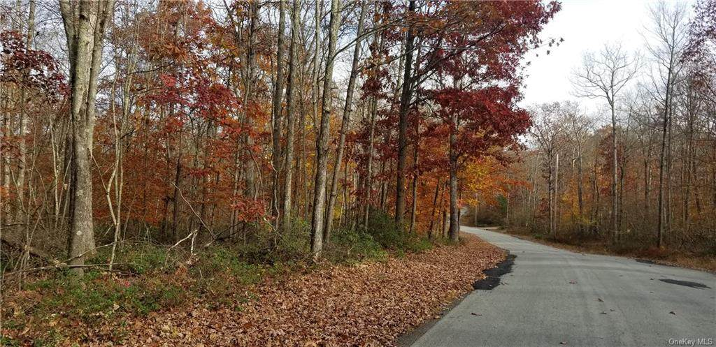 Lot 42 Perry Pond Road (Nys Rt 97) - Photo 1