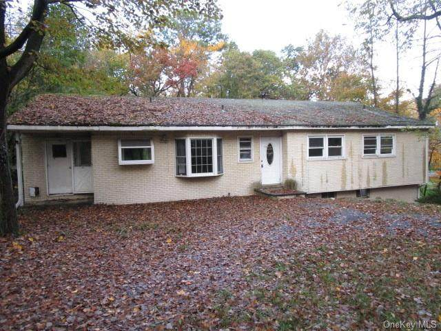 393 Blauvelt Road, Pearl River, NY 10965 (MLS #H6080056) :: Howard Hanna Rand Realty
