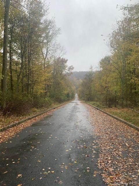 7 Badi Drive, Nyack, NY 10960 (MLS #H6080361) :: RE/MAX RoNIN