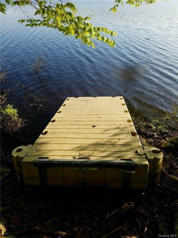 Plank Road, Forestburgh, NY 12777 (MLS #H6080486) :: McAteer & Will Estates | Keller Williams Real Estate