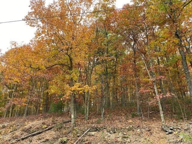 Route 97, Sparrowbush, NY 12780 (MLS #H6081602) :: Kevin Kalyan Realty, Inc.