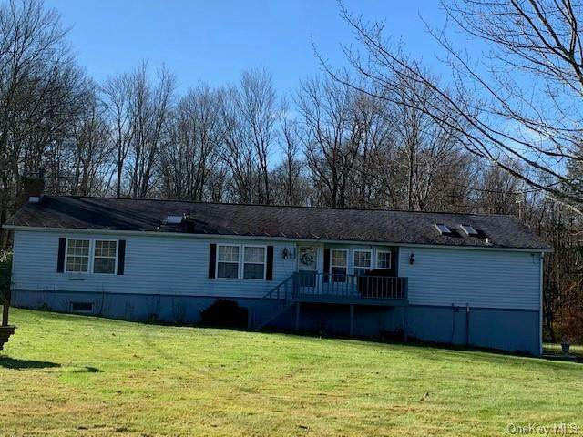 1062 County Road 114, Cochecton, NY 12726 (MLS #H6081723) :: William Raveis Baer & McIntosh