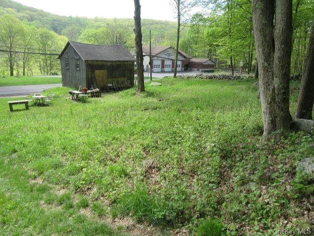 715 Peekskill Hollow Road, Putnam Valley, NY 10579 (MLS #H6084248) :: Mark Seiden Real Estate Team