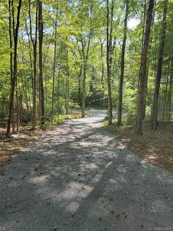 258 Camp Road, Wawarsing, NY 12489 (MLS #H6084586) :: Cronin & Company Real Estate