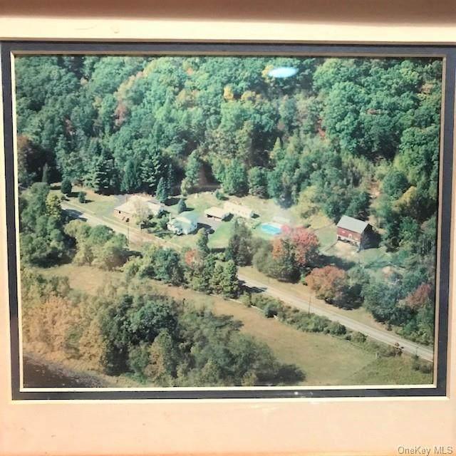 961 Rt. 590, Lackawaxen, PA 18435 (MLS #H6084795) :: Mark Boyland Real Estate Team