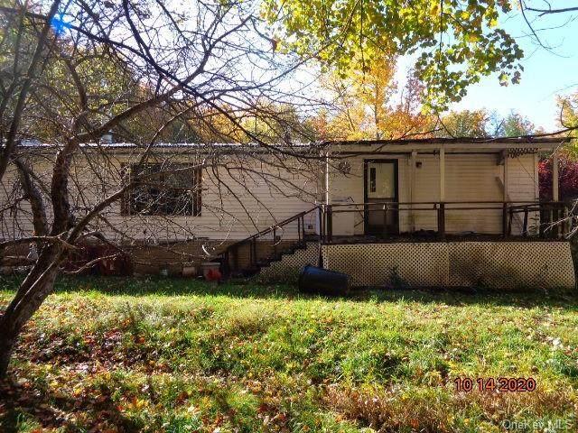 280 Wade Road, Liberty, NY 12754 (MLS #H6085128) :: Cronin & Company Real Estate