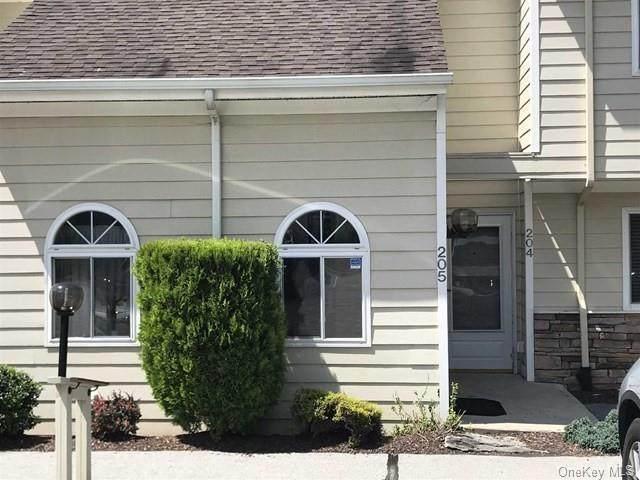 205 Crystal Hill Lane, Poughkeepsie, NY 12603 (MLS #H6085802) :: Mark Boyland Real Estate Team